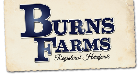 Burns Farms